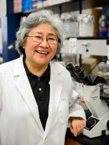 Dr. Janet Yamamoto in her laboratory at the University of Florida.