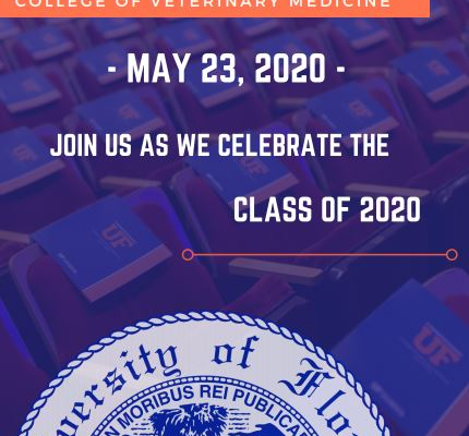 Virtual Commencement Invite 2020