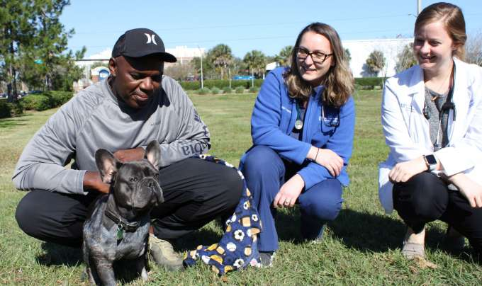 Saving Neo: UF veterinarians beat odds, revive dog on Christmas Day