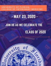 Virtual Commencement Invite 2020
